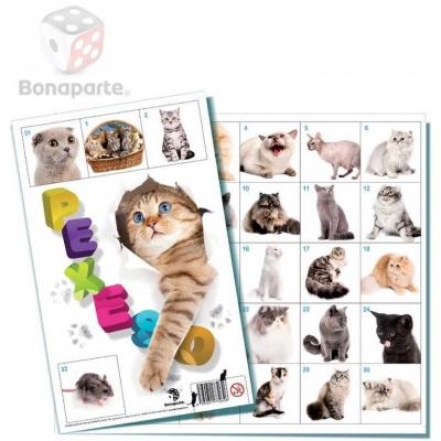 BONAPARTE Pexeso Kočky 32 dvojic fotografie *SPOLEČENSKÉ HRY*