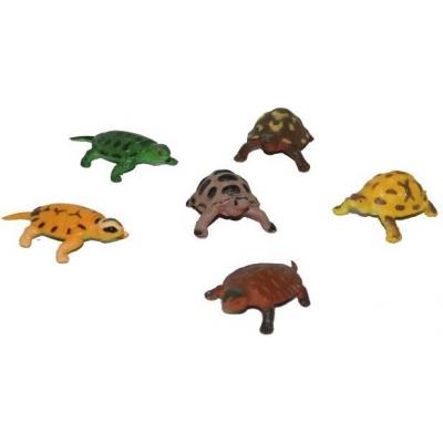 Želva set 6ks zvířátko různé druhy v sáčku plast